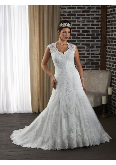 tulle-and-lace-illusion-sleeves-sweetheart-neckline-with-keyhole-back-plus-size-wedding-gown-rc0055