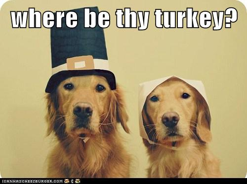 We Can Haz Turkey