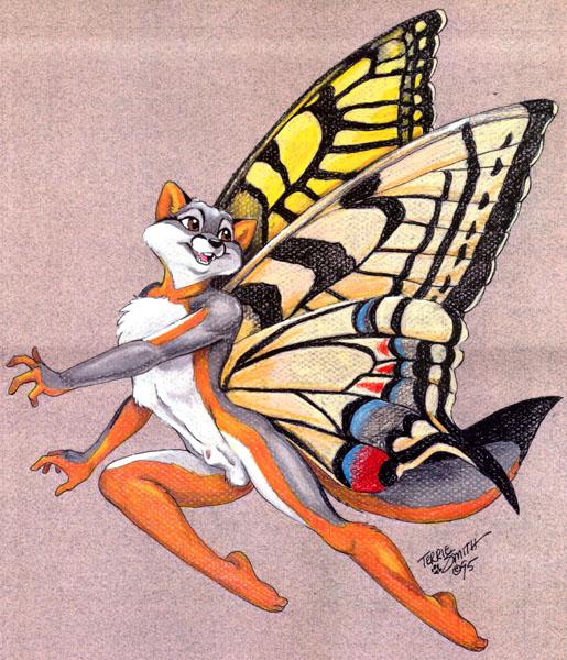 VulpesSwallowtail