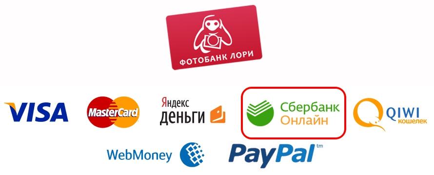 lori-payment0-sk