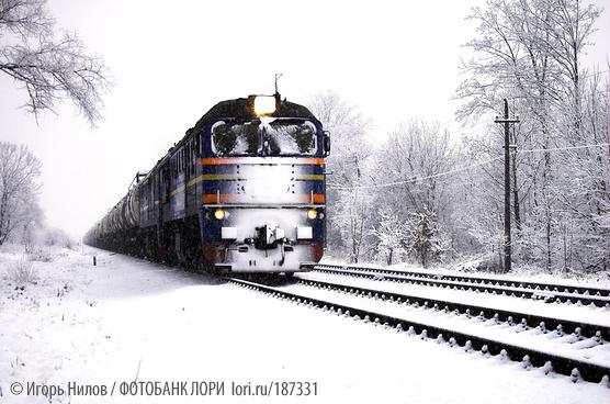 Фото Игоря Нилова