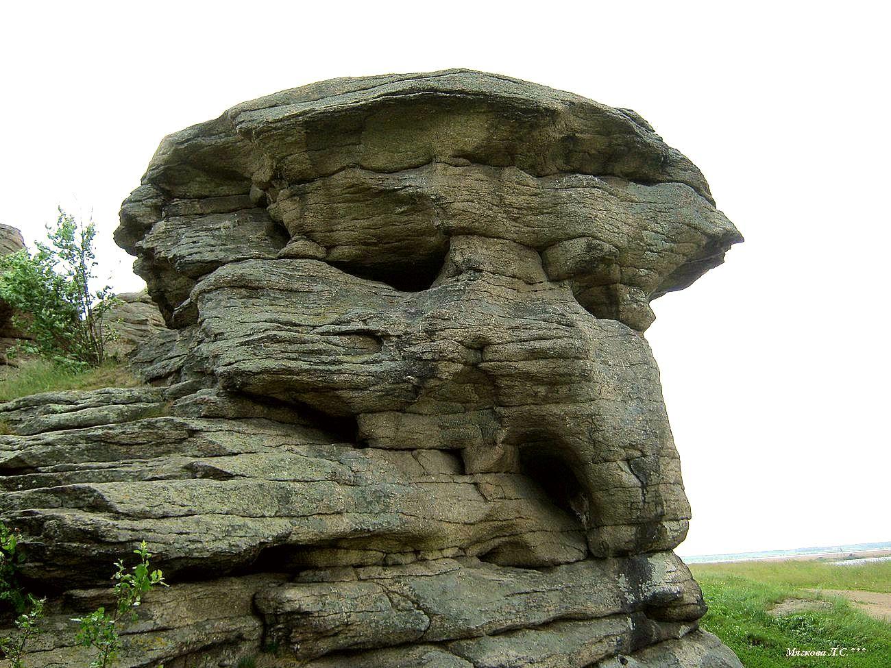 000 камень гриб.jpg