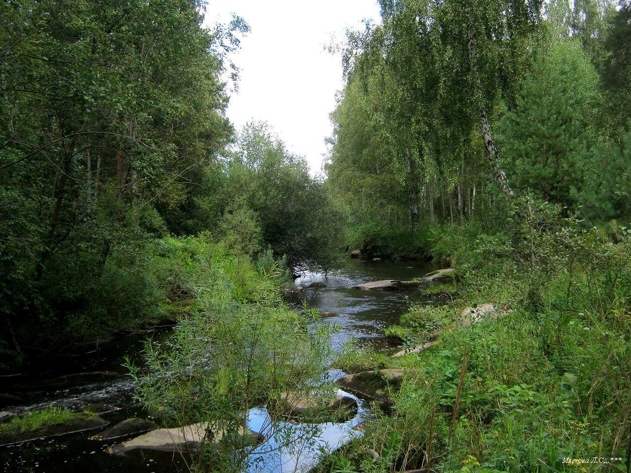 01 река6.jpg