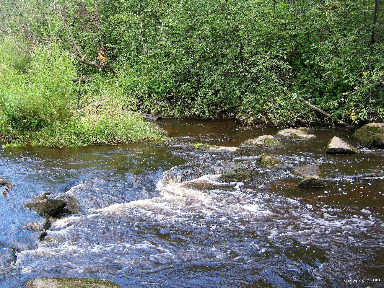 01 река перекат.jpg