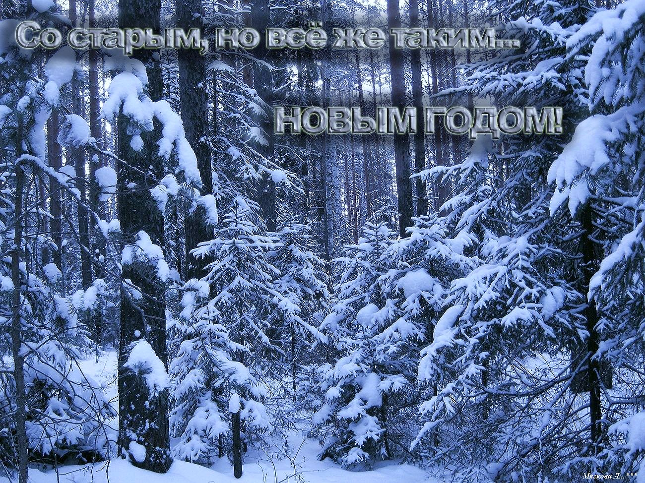 000 Старый Новый _8976.jpg