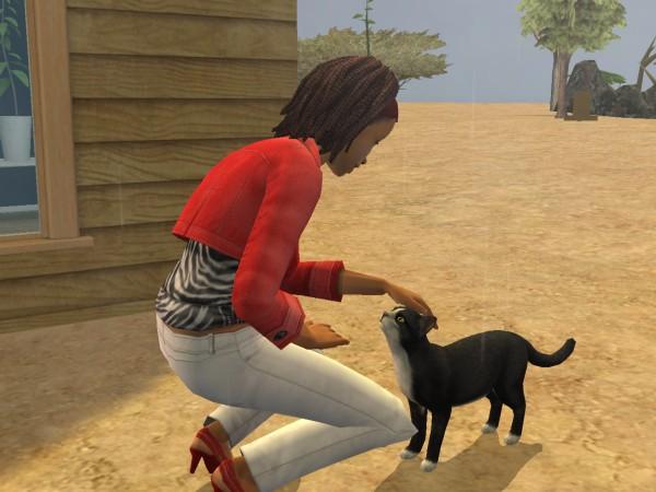 Sims Wk 4 02