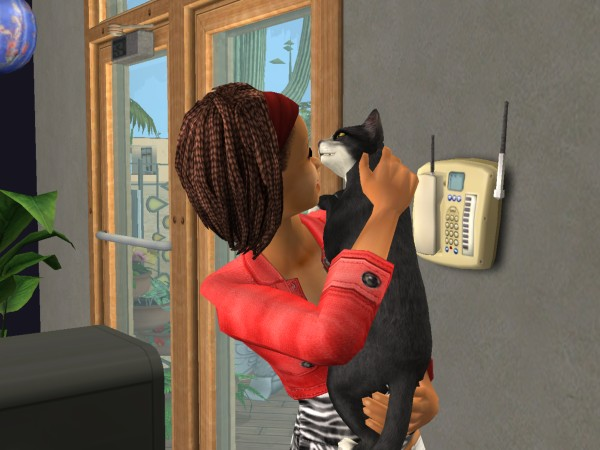 Sims Wk 4 03