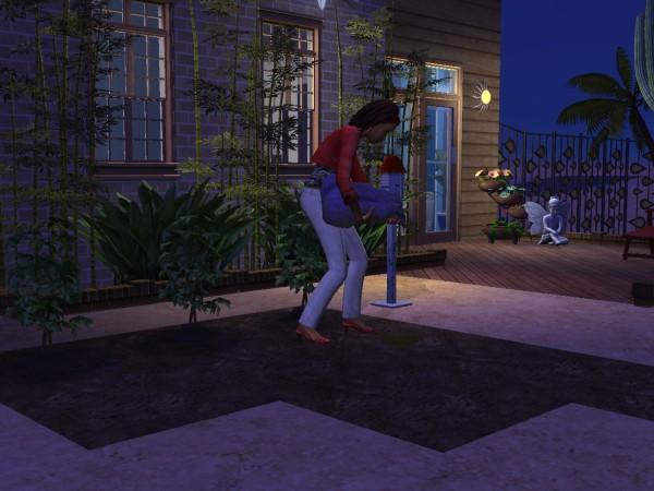 Sims Wk 4 17