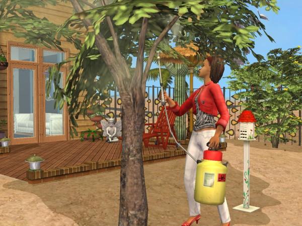 Sims Wk 4 19