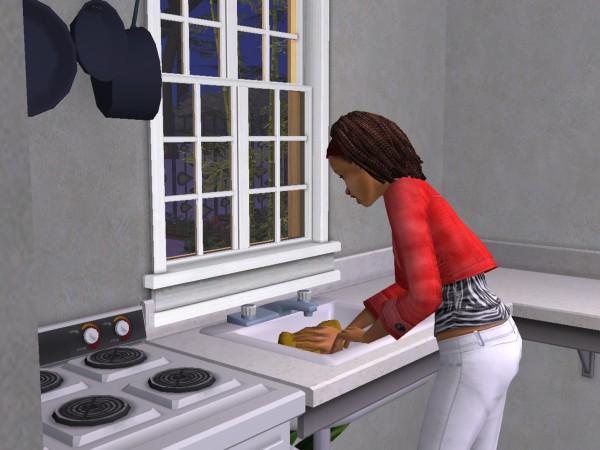 Sims Wk 4 22