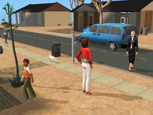 Sims Wk 4 24