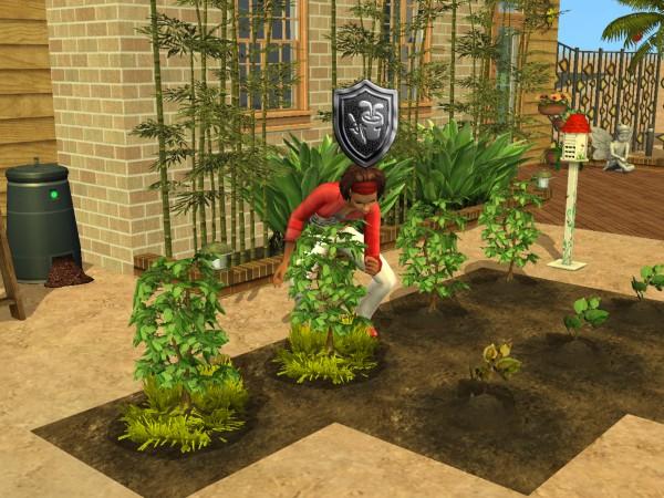 Sims Wk 4 31