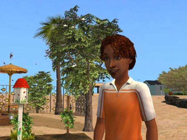 Sims Wk 4 32
