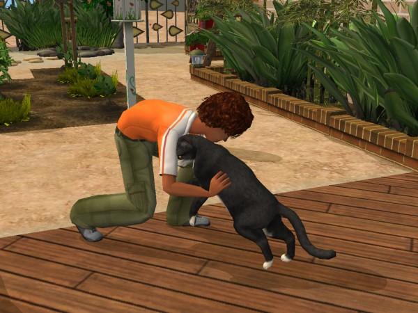 Sims Wk 4 33