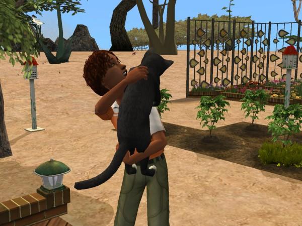 Sims Wk 4 34