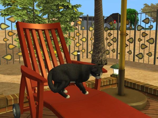 Sims Wk 4 36