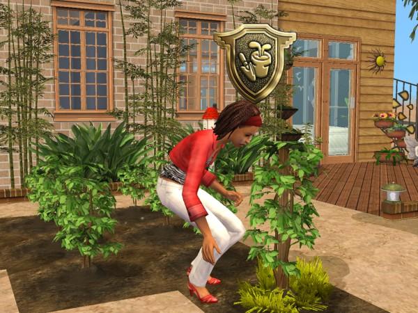 Sims Wk 4 39
