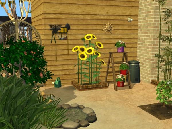 Sims Wk 4 40