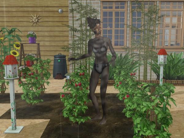 Sims Wk 4 41