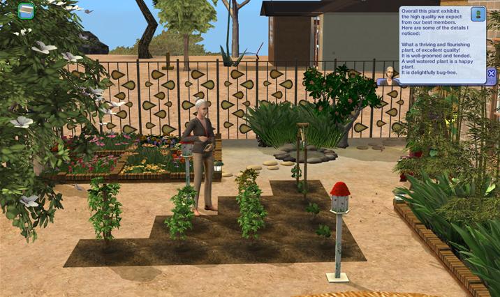 Sims Wk 4 45