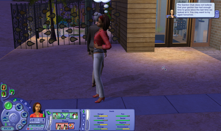 Sims Wk 4 55