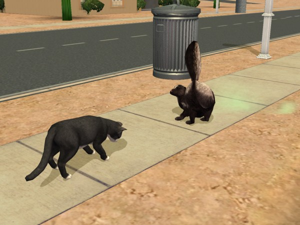 Sims Wk 4 56
