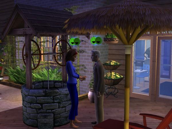 Sims Wk 4 64