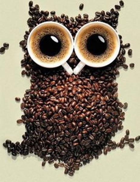 12Кофейная сова