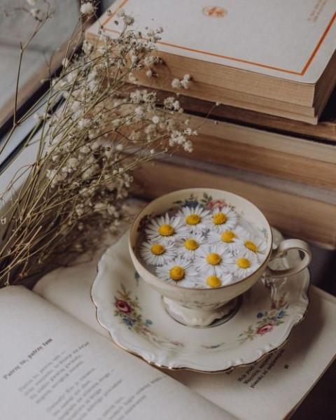 08Ромашковый чай теа витч