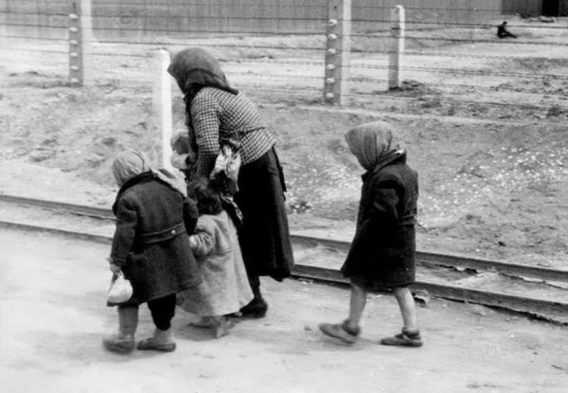 Пожилая женщина с детьми идет по дороге в газовую камеру