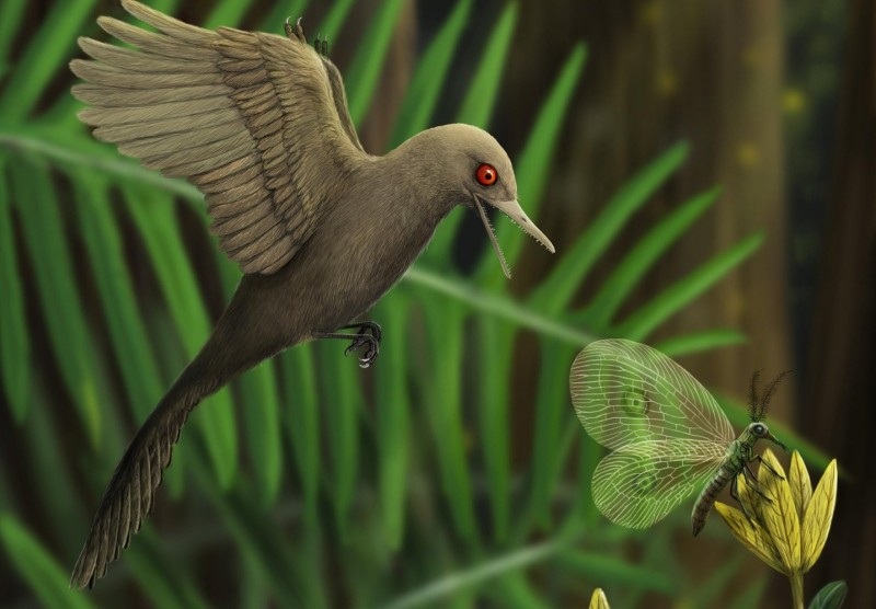 Возможный вид самого маленького обнаруженного динозавра.