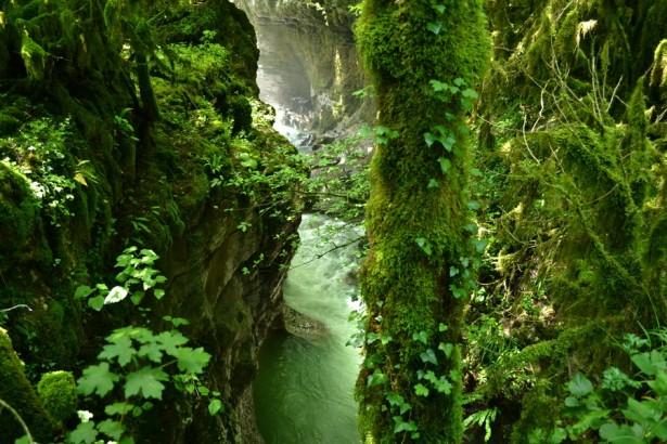 Каньон реки Абаша