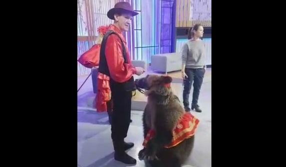 Нападение медведя на девушку во время съемки передачи Про любовь 1