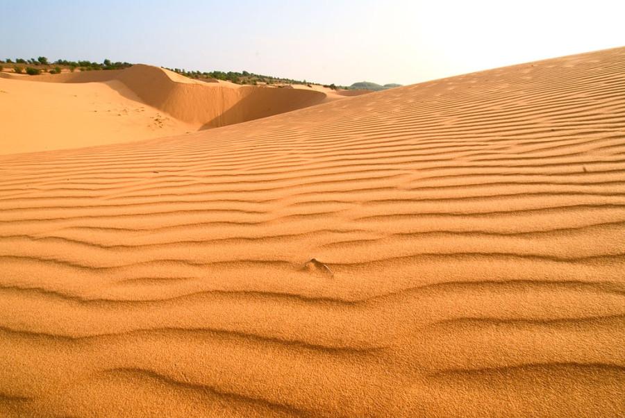 muine2007_red-dune (5)