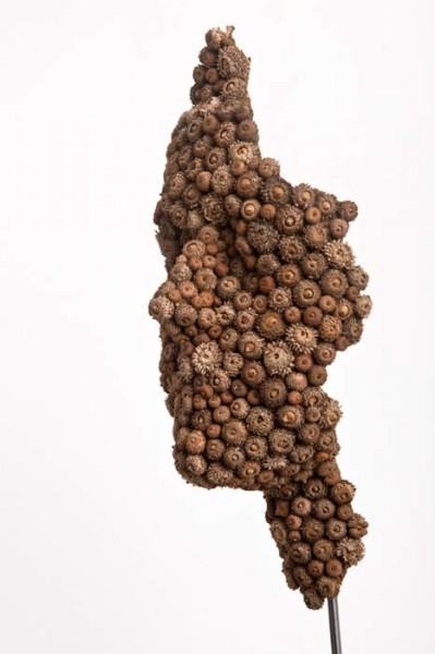 Mask I - acorn cups, mixed media 27 x 11 x10cm - Anna Gillespie 2012