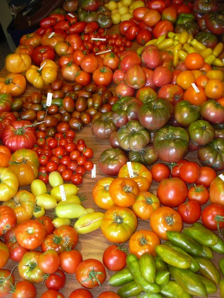 Heirloom Tomatoes 6