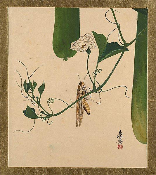 Grasshopper on Gourd Vine, Shibata Zeshin (1807–1891)
