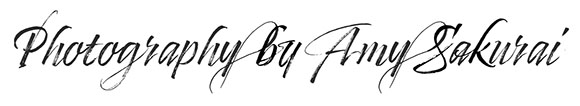 Timberline Font Test