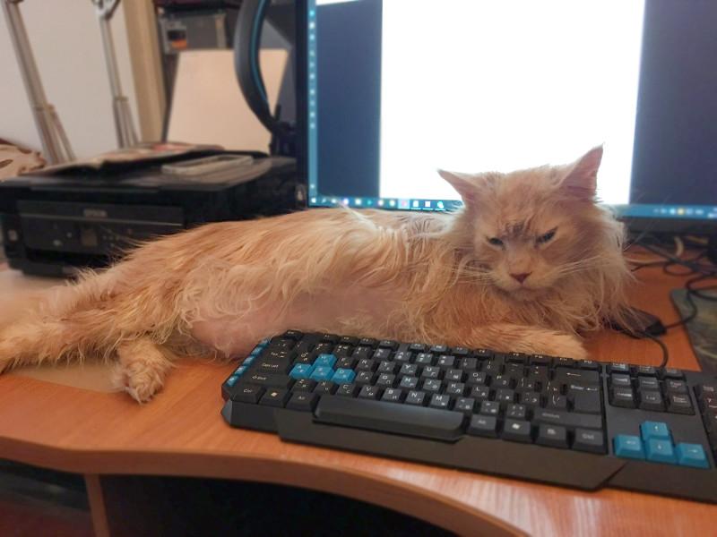 Ну, почти на клавиатуре