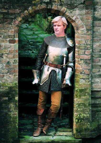 Shining armour Illya