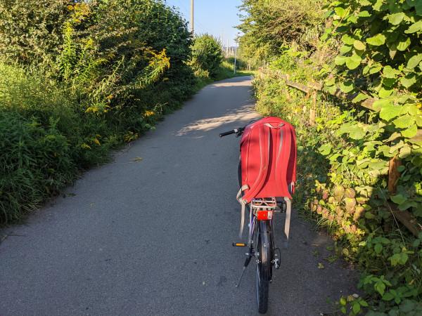 Яблочный сад, велосипед и донаты в полночь