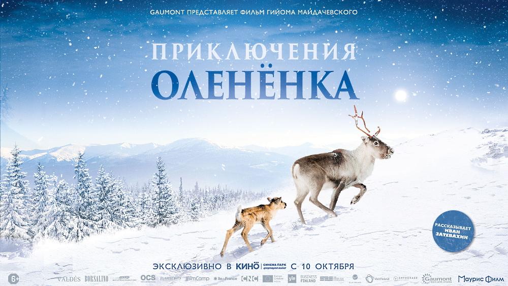 Приключения олененка в Лапландии