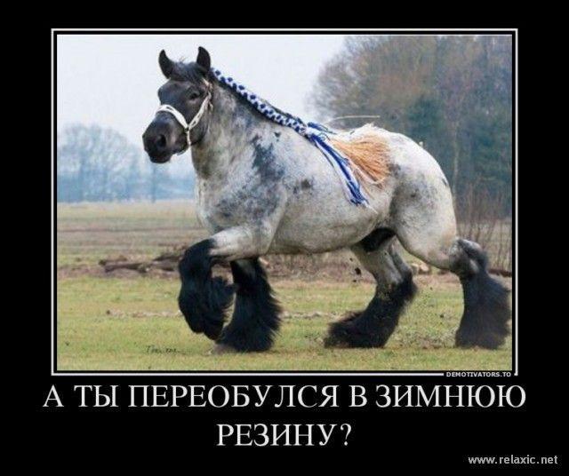 demotivator_41