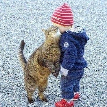 дети + животные 3