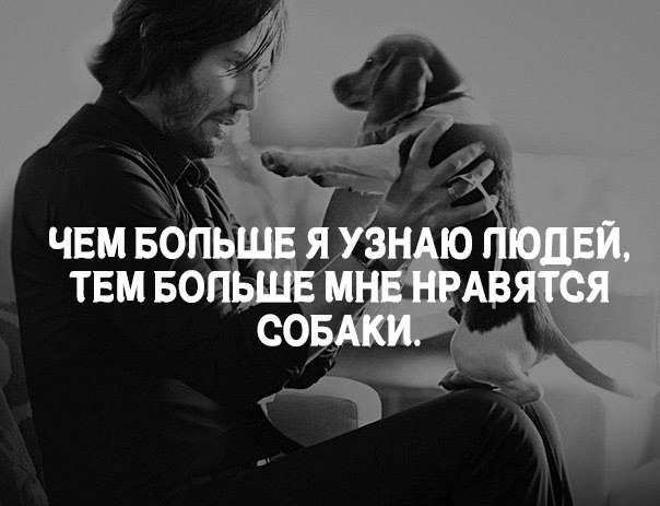 про собак