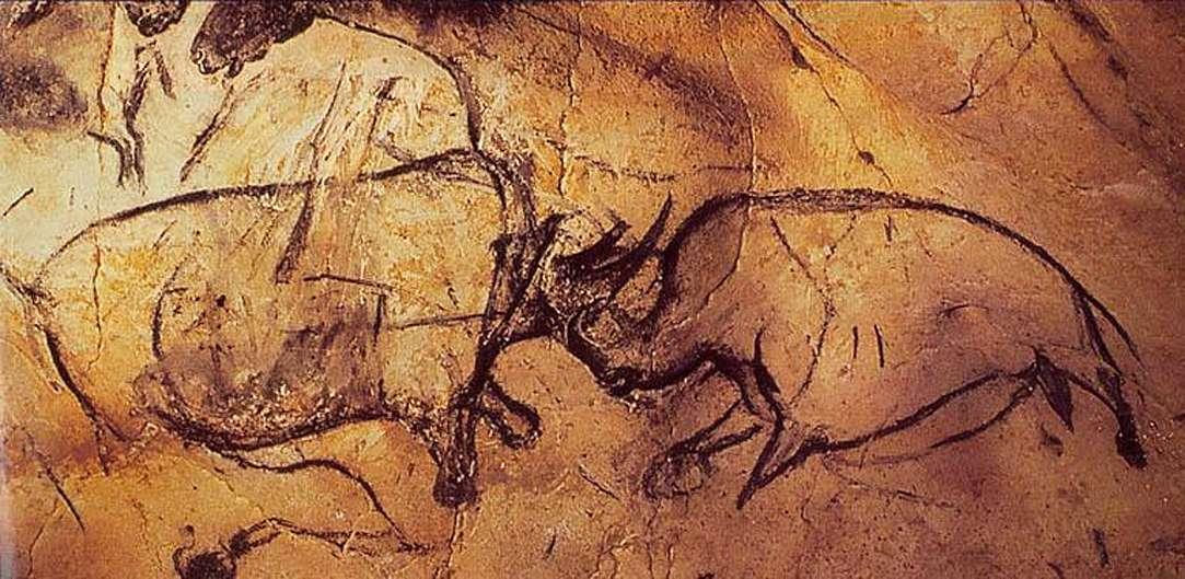 Битва носорогов
