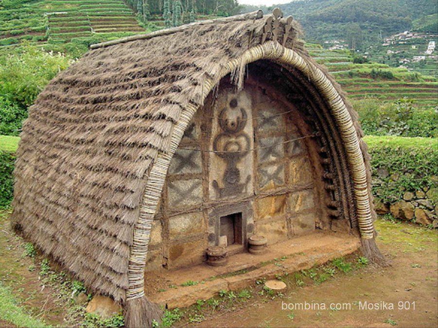 дом тода