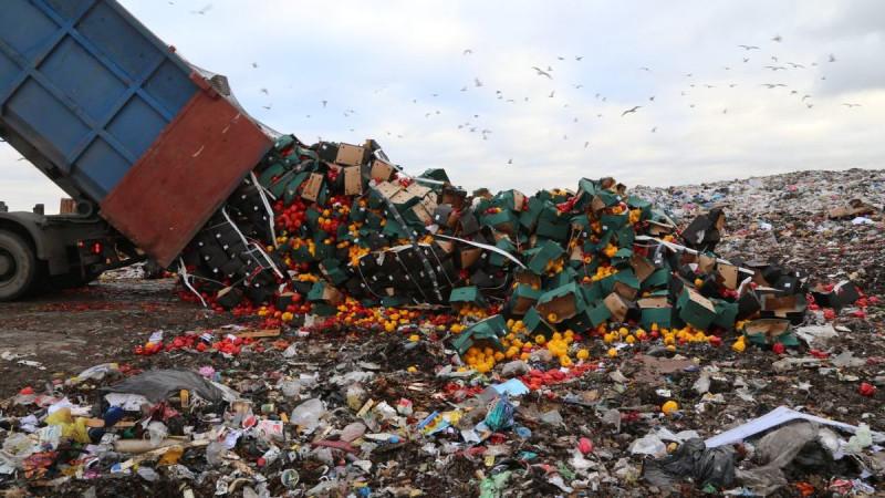 уничтожение продуктов питания