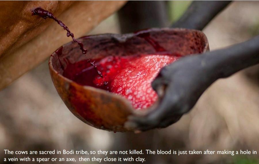 кровь 2