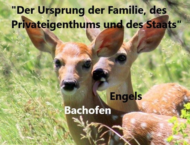 Бахофен и Энгельс